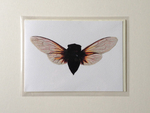 Batwing - Greetings Card
