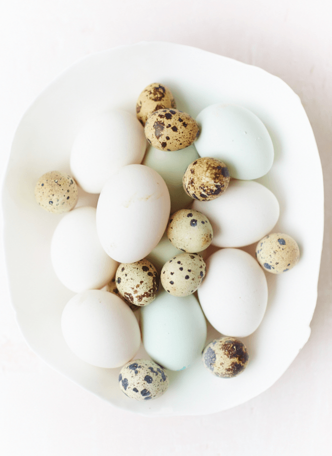 Speckled eggs - David Loftus Print Shop