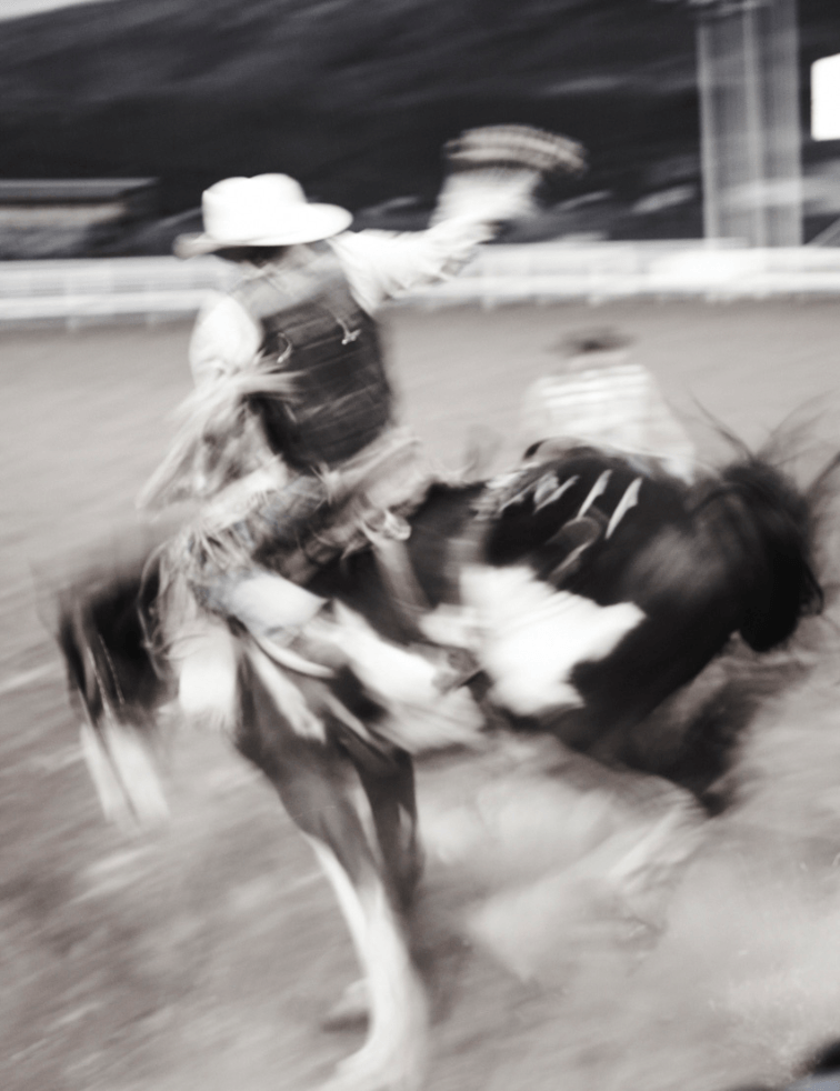 Rodeo - David Loftus Print Shop