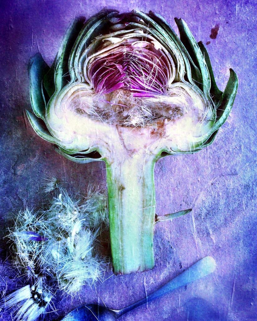 Purple Artichoke - David Loftus Print Shop