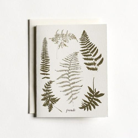 Boxed Note Cards:  Fronds