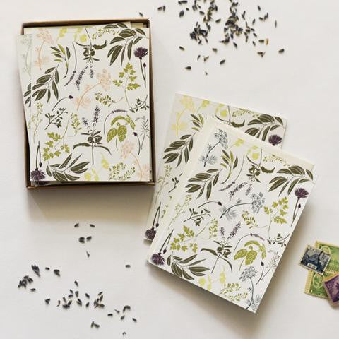 Boxed Note Cards:  Garden Herbs