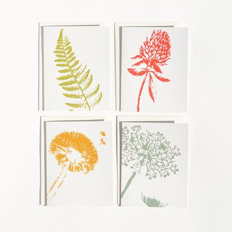Boxed Note Cards:  Wild Pretties
