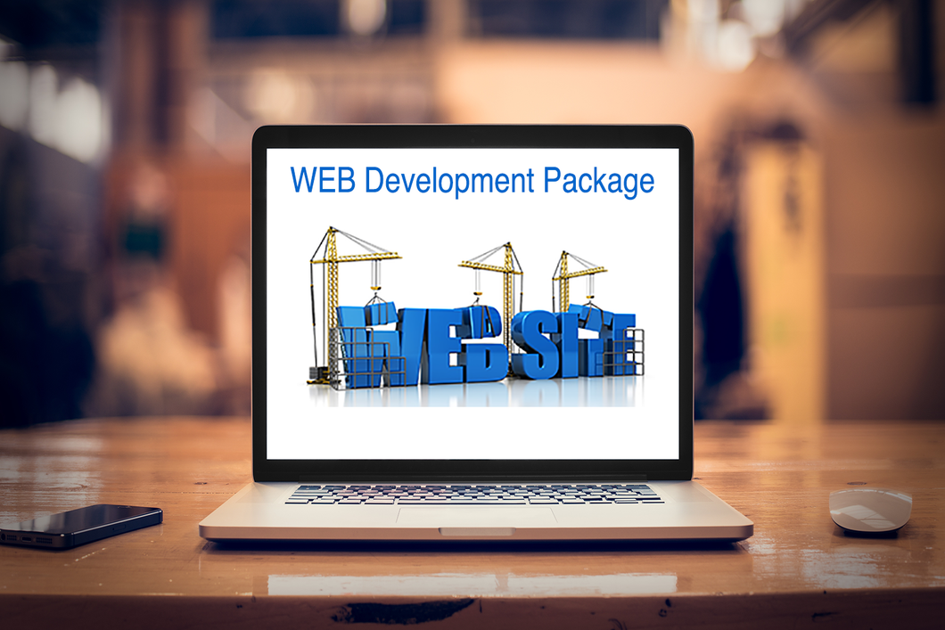 A Domain, Website, Professional Email, and a 1000 Word per Month Blog for $100- A complete business package.