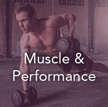 Shop Muscle & Performance >>