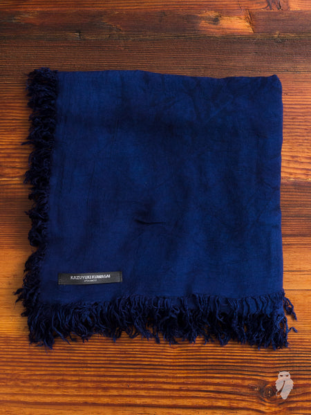 Distressed Fringe Scarf in Navy