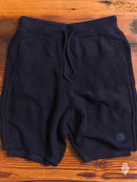 Linear Shorts in Night Navy