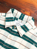 Bravo Button-Up Shirt in Green Check