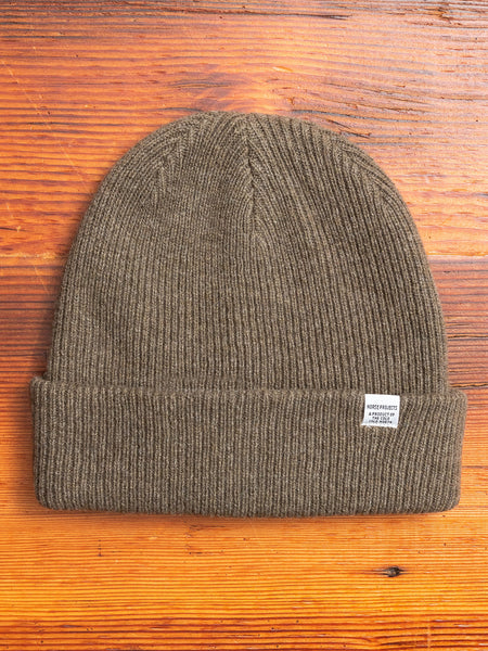Norse Beanie in Ivy Green