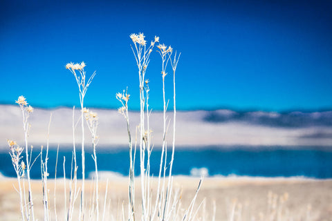 Mono Lake - how it feels