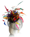 Mr. Song Millinery Feather Beanie Birdcage Veil Fascinator Headpiece - VF49 Multicolor