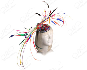 "Mr. Song Millinery Profile Fascinator Headband ""Bird of Paradise"" - Multicolor Rainbow"