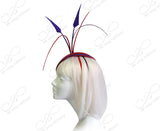 Profile Dish Beanie Fascinator Headband - Red/Purple
