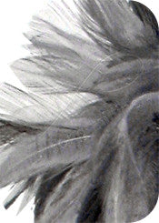 Feather and Ribbon Fascinator - Gray