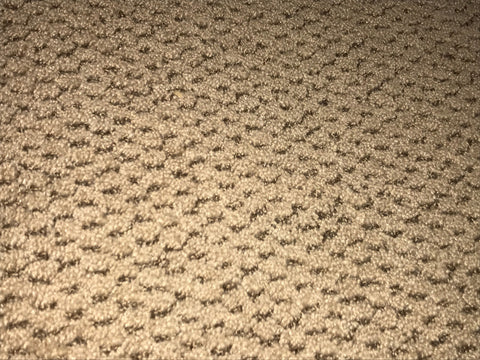 Carpet - FL6