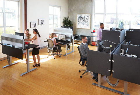 Office staff using ergonomic and standing desks