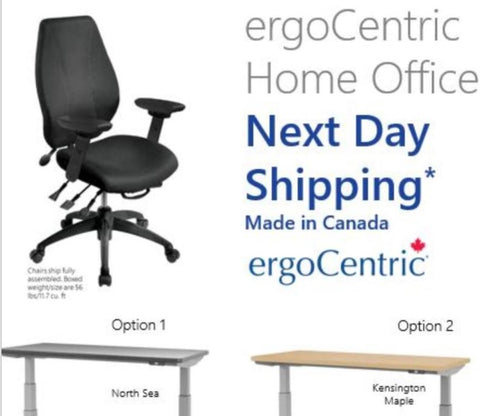 Ergocentric Home Office Special Next Day Shipping Made In Canada