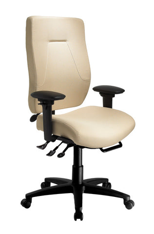eCentric™ Executive [ergonomics] - fitzBODY.com