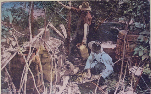 Moonshiners in North Carolina - vintage postcard