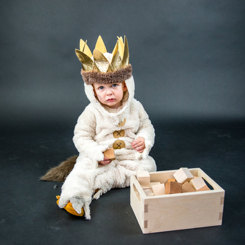 Where the Wild Things Are - Toys - Blocks