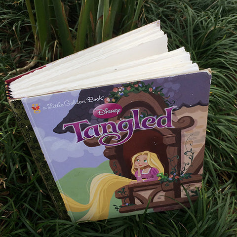 Tangled-Golden Book Journal READY TO SHIP