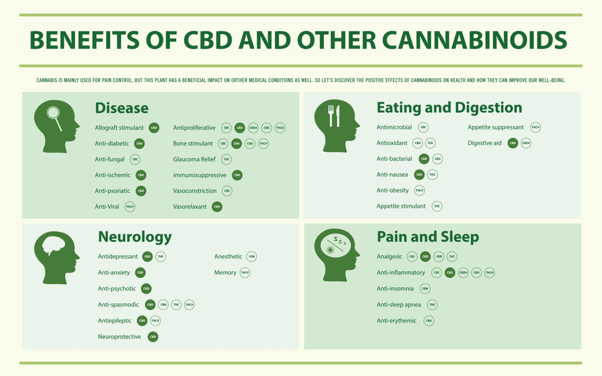 Benefits of CBD and Other Cannabinoids horizontal infographic illustration about cannabis as herbal alternative medicine and chemical therapy, healthcare and medical science vector
