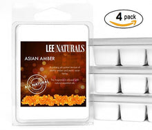 ASIAN AMBER Premium 6-Piece Soy Wax Melt Clamshell