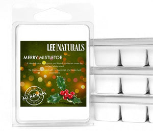 MERRY MISTLETOE Premium 6-Piece Soy Wax Melts - LeeNaturals.com - 1