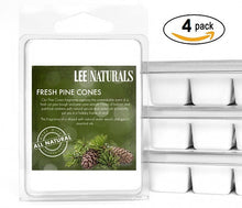 FRESH PINE CONES Premium 6-Piece Soy Wax Melts