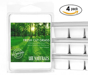 FRESH CUT GRASS Manly Melts Premium Collection 6-Piece Soy Wax Melts
