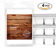 CEDAR Manly Melts Premium Collection 6-Piece Soy Wax Melts