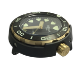 Regia Diver 2018 - Black dial (Gold) (free shipping)