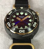 Regia Diver 2018 - NEW Blue sunburst dial (Gold) (free shipping)