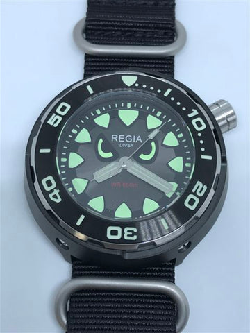 Regia Diver 2018 - NEW Angry Eye Grey sunburst dial (Silver) (free shipping)