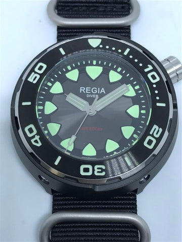 Regia Diver 2018 - NEW Grey sunburst dial (Silver) (free shipping)