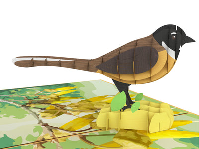 New Zealand Fantail (Piwakawaka) 3D Creative Pop Up Card