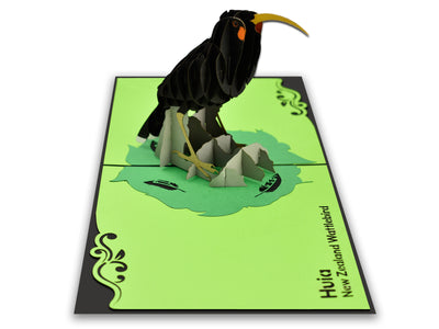 New Zealand Huia Bird Popcard