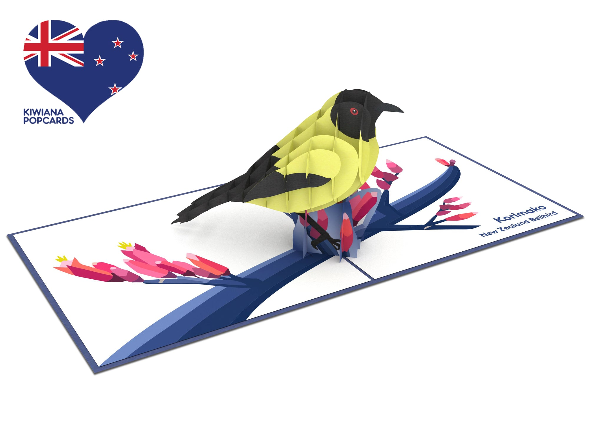 New Zealand Bellbird 3D Creative Pop Up Card
