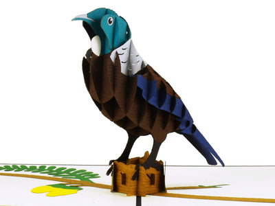 New Zealand Tui 3D Creative Pop Up Card - close up