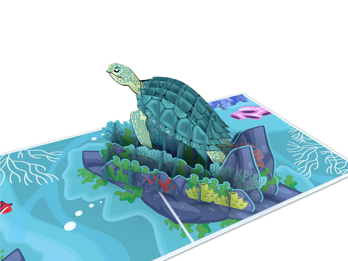 Turtle Pop Up Card