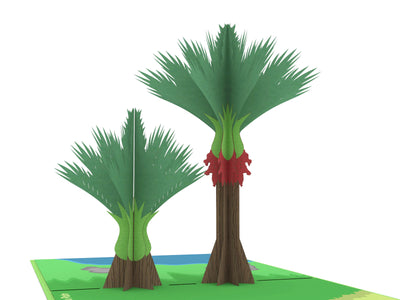 Nikau Palm Tree Popcard