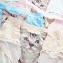 Load image into Gallery viewer, 5 Colors Kitty in my Undies XD SP164915 - SpreePicky  - 1