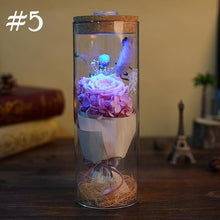 Load image into Gallery viewer, Rose Bottle Lamp SP14102