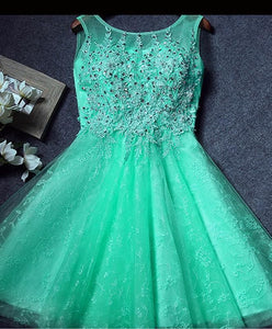 Cute Round Neck Lace Short Prom Dress, Homecoming Dress - DelaFur Wholesale