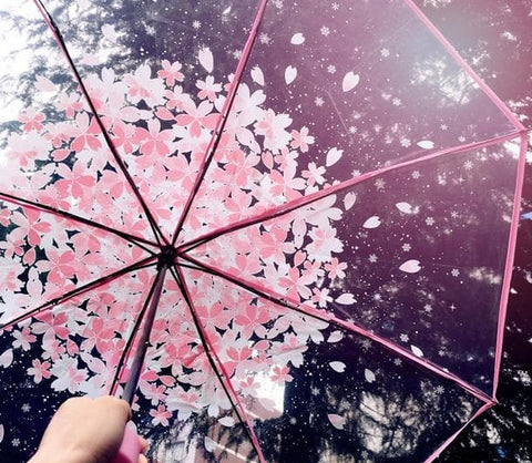 Blue/Pink Sakura Sun-Rain 3 Fold Clear Umbrella SP167530