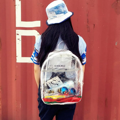 Transparent School Backpack SP166900