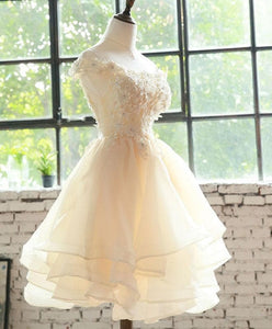 Champagne Lace Tulle Short Prom Dress, Homecoming Dress - DelaFur Wholesale