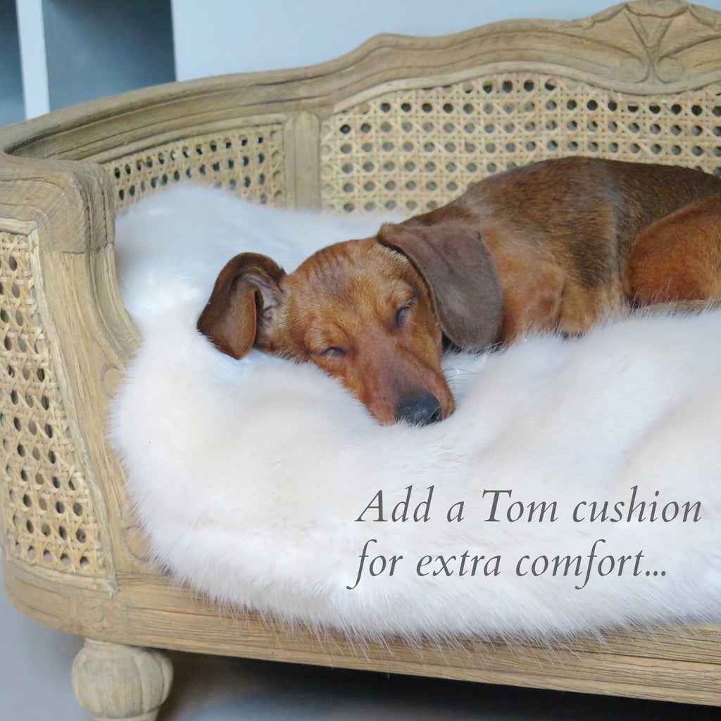 Luxury dog bed - Arthur