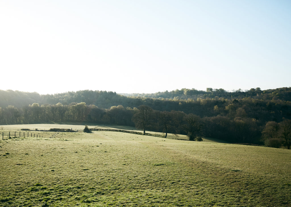early morning frosty landscape image of a field with trees and hills in the distance