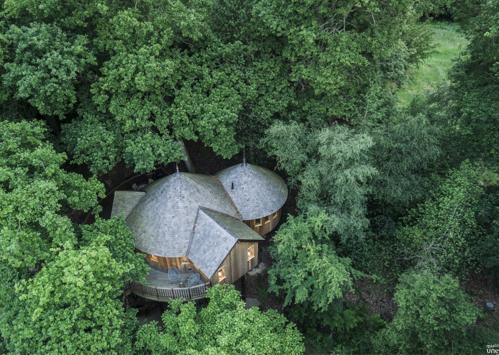 Arial view of a wooden building nestled in trees